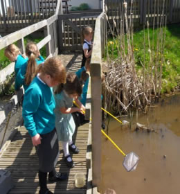 pond-dipping3